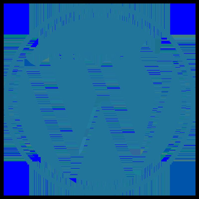 Wordpressentwicklung